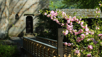 Permalink auf:Anlage und Turmmuseum